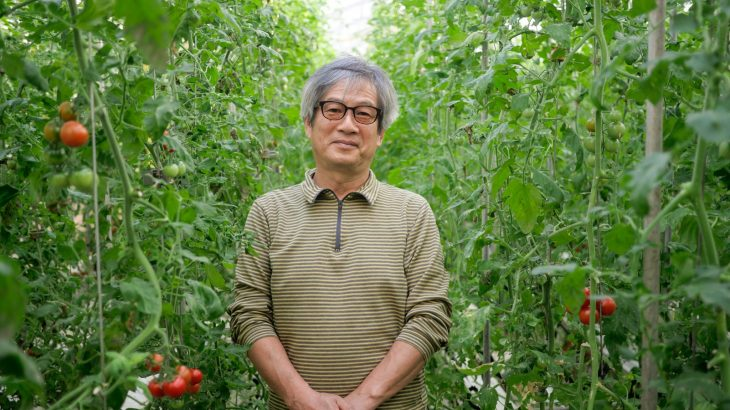 都市と調和するトマト農園(西東京市・ファーム柳沢)