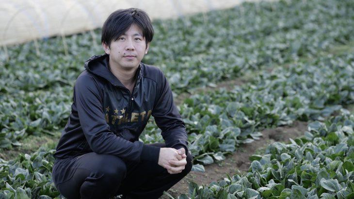 四季折々の旬野菜を届ける農園(西東京市・やすだ農園)