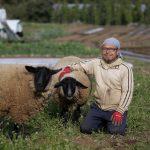 自然に寄り添う農業(町田市・あした農場)