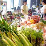 地域の野菜を地域の人々へ(国立市・株式会社エマリコくにたち)